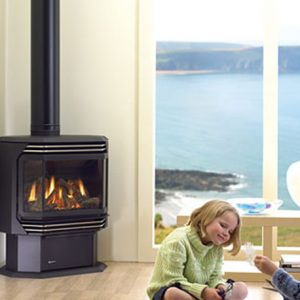 Regency FG39 Gas Log Fire Silver Accents